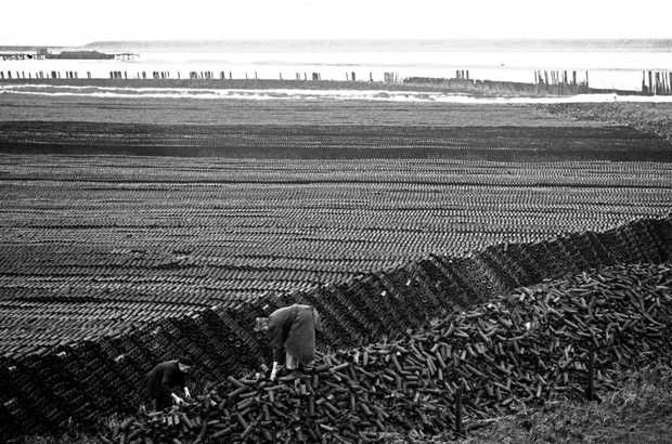 "Approximately ten million drainage pipes, ready to be used for draining the Noordoostpolder. This photo was ""blocked"" by the censorship, 1940."