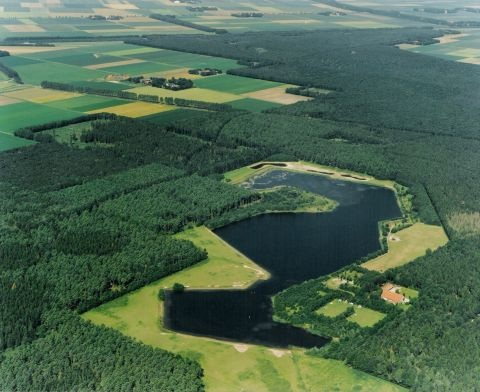 The Kuinderplas, part of the Kuinderbos.