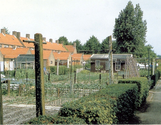 These fertile gardens in Emmeloord are spacious and very suitable as a vegetable garden.