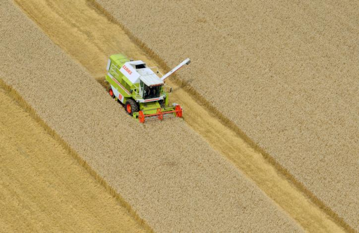 The harvesting of wheat on a field along the Zuidwesterringweg in the Noordoostpolders, 2011.